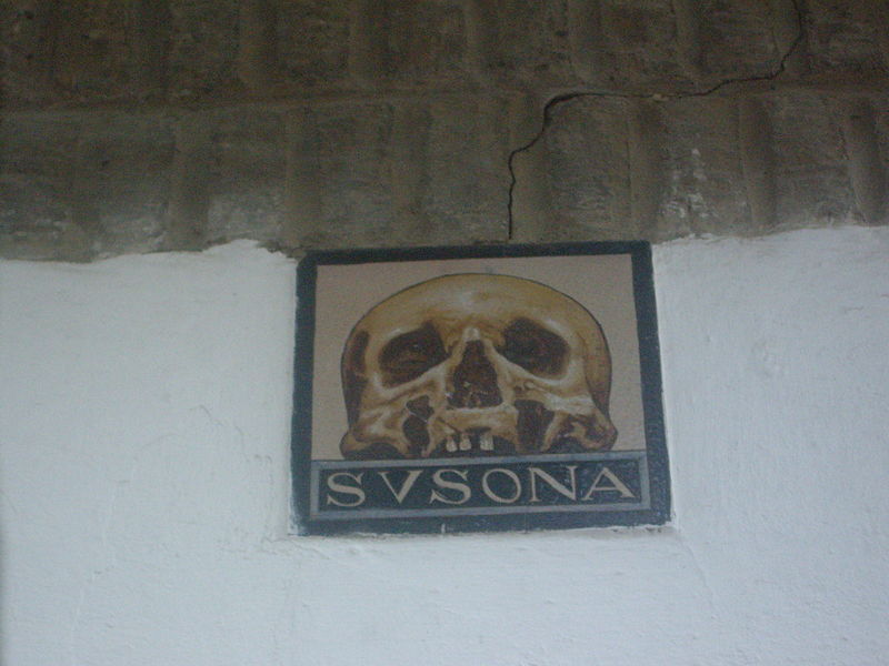 Calavera_casa_Susona