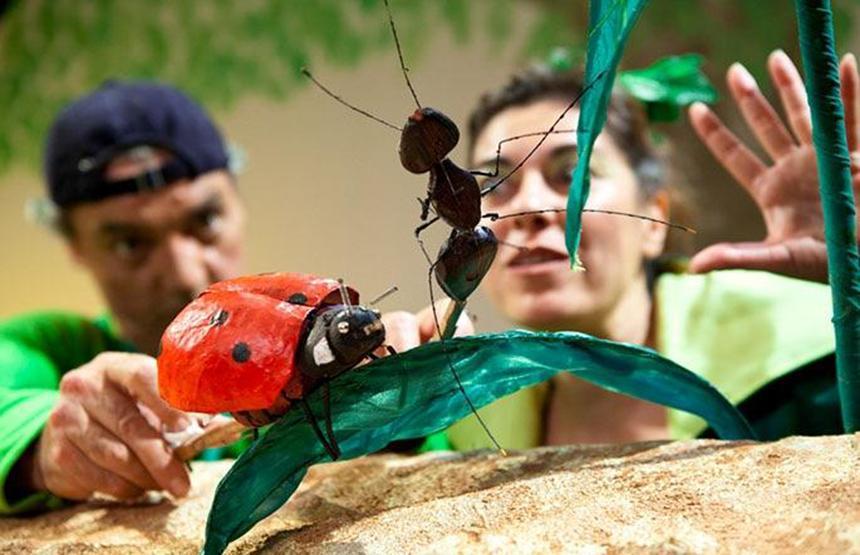 Los pequeños más grandes. Las fábulas del equilibrio El maravilloso mundo de los insectos