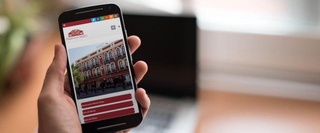 agencia-diseno-paginas-web-sevilla-manolo-mayo
