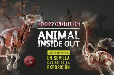 animalinsideoutsevilla2017
