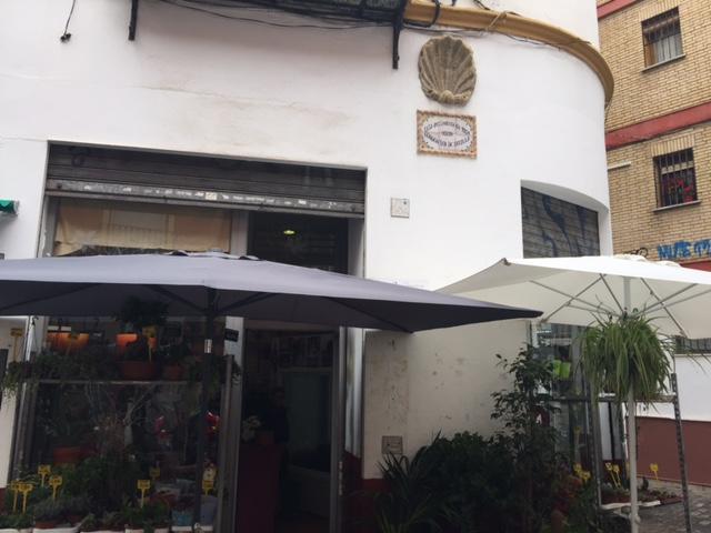 La Venera centro geográfico de Sevilla