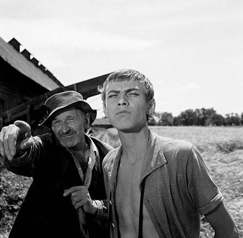 cine-eslovaco-el-sol-en-una-red-cicus-sevilla