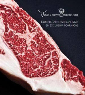 Comprar carne de vaca rubia gallega madurada certificada | Comprar carne de buey wagyu Santa Rosalía | Comprar carne de ternera Halal certificada | Comprar chuletón de buey gallego auténtico online