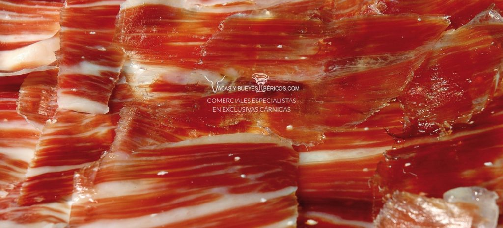 Comprar carne de vaca rubia gallega madurada certificada   Comprar carne de buey wagyu Santa Rosalía   Comprar carne de ternera Halal certificada   Comprar chuletón de buey gallego auténtico online