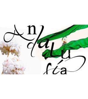 Actividades en los distritos de Sevilla para celebrar el Día de Andalucía
