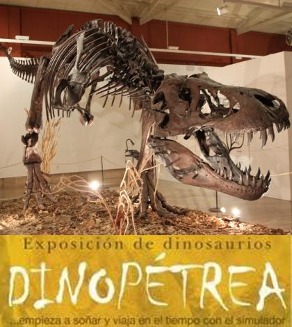 dinopetrea-sevilla-2014