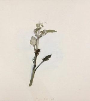 dorothea-von-elbe-galeria-rafael-ortiz-sevilla-2018