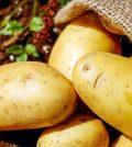 fritada-de-patatas-en-sevilla