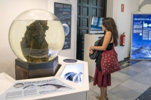 Exposición: La mar de cetáceos en Andalucía - Casa de la Ciencia Sevilla