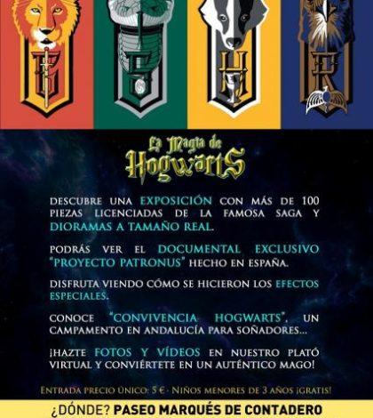 The Magic of Hogwarts. Sevilla Marqués de Contadero space