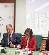 plan-romero-2018-el-rocio