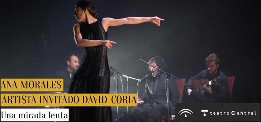 Una mirada lenta. Ana Morales y artista invitado David Coria. Flamenco Viene del Sur 2017. Teatro Central, Sevilla